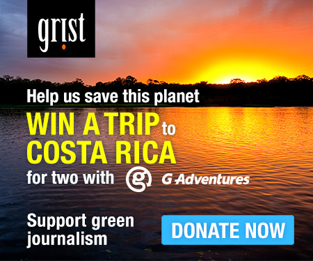 Please donate to Grist
